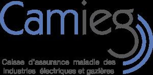 CAMIEG Google_logo